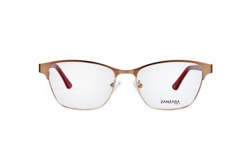 oprawki Zanzara Z3029 C1
