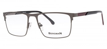 oprawki Bergman 5669-C4